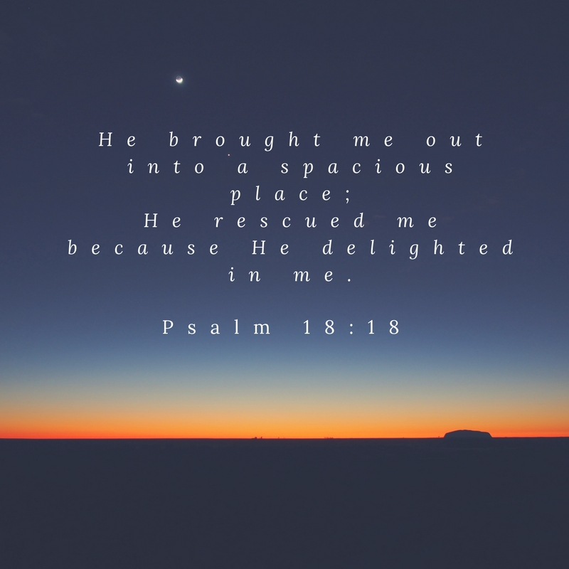 He brought me out into a spacious place;He rescued me because He delighted in me.Psalm 18_18.jpg